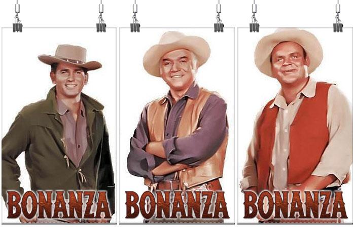 Image result for TV SHOW - bonanza